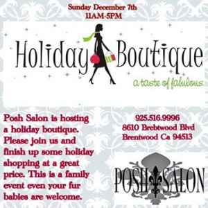 Posh Holiday Boutique