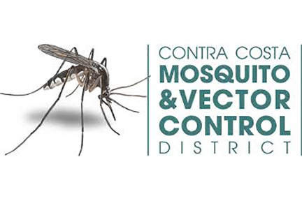 Mosquitoes With West Nile Virus Were Just Found In Brampton & Mississauga